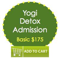 yogidetox-basic-175
